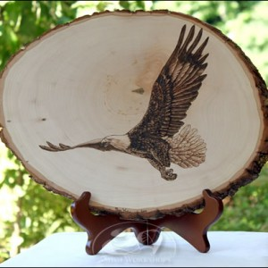 Eagle-Woodburning amish