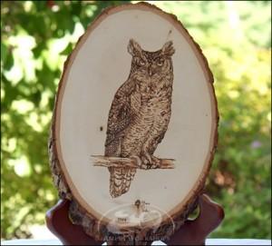 Owl-Woodburning amish