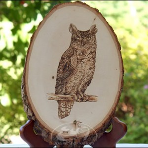 Owl-Woodburning amish