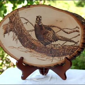 Pheasant-Woodburning amish