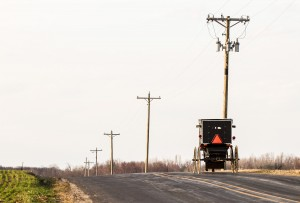 Amish Buggy on a Country Road