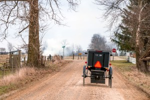An Amish buggy on a dirt country road.