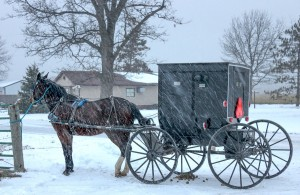 An Amish horse and buggy wait at the hitch on a snowy day.