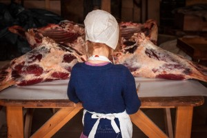 A young Amish girl helps her family butcher a steer.