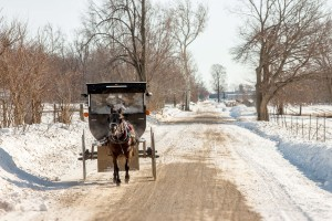An Amish buggy on a snowy day.