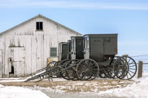 Three buggies parked at an Amish school on a winter day.