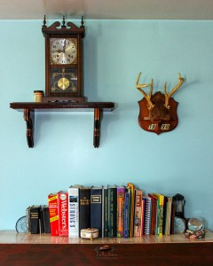 Typical bookshelf in an Amish home.