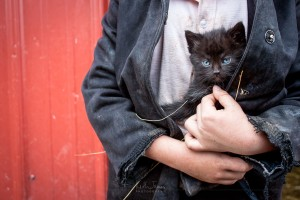 An Amish boy holds his blue-eyed kitten in his jacket.