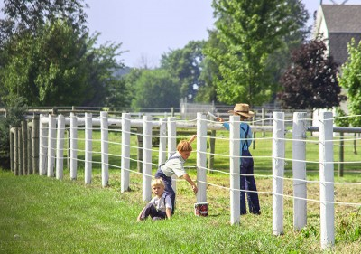 Three young Amish boys painting a fence.