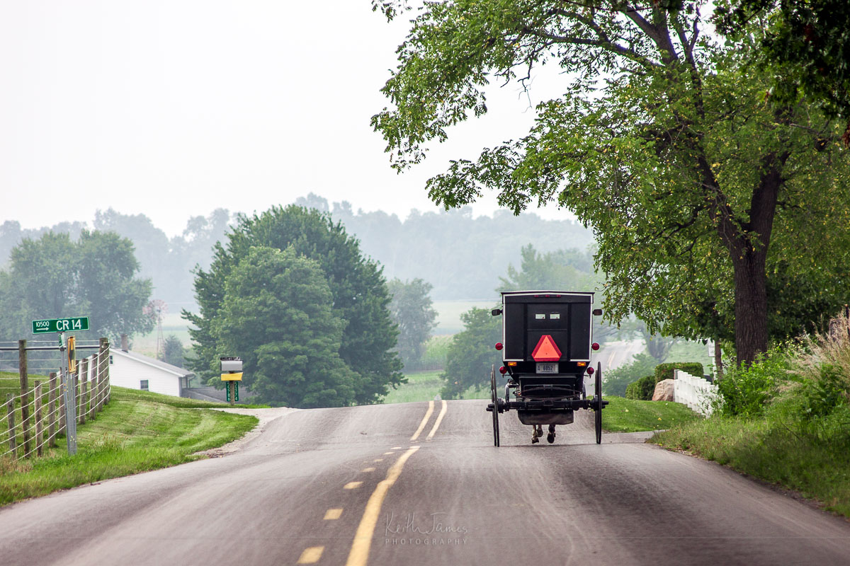 An Amish buggy on a country road.