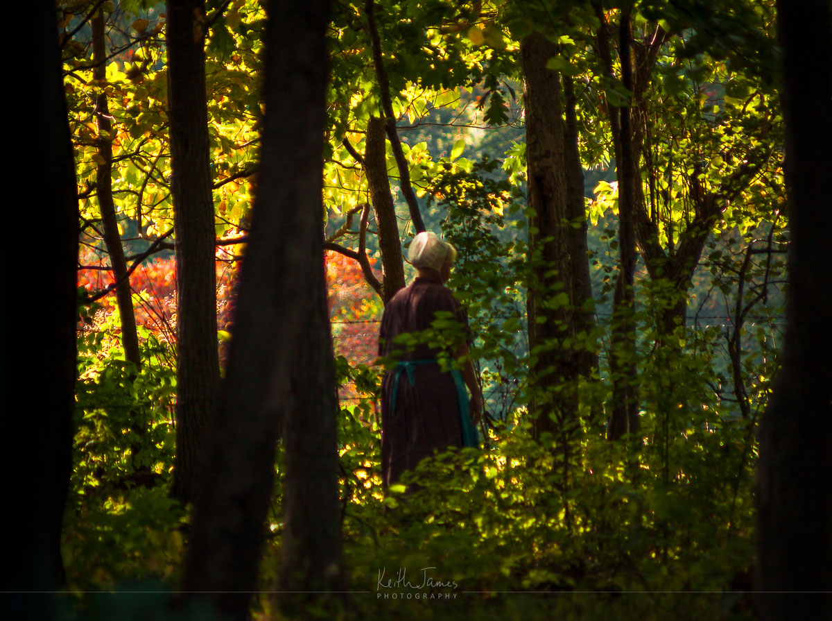 An Amish woman walks through the woods.