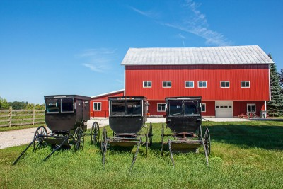 Amish buggies for sale on a beautiful summer day.